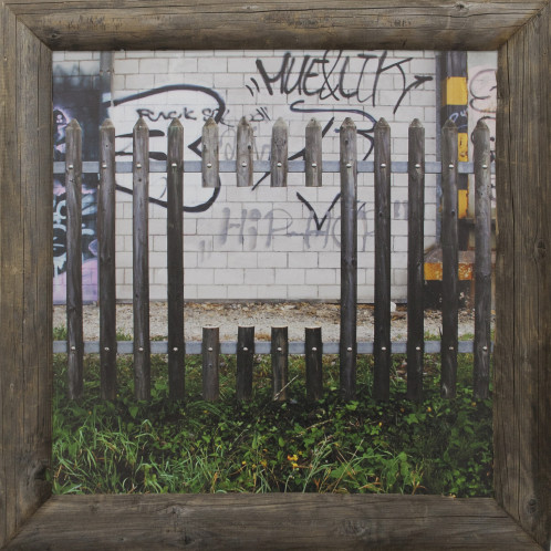 Fence 1 2015