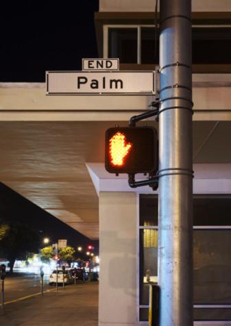 Jens Pecho - End Palm